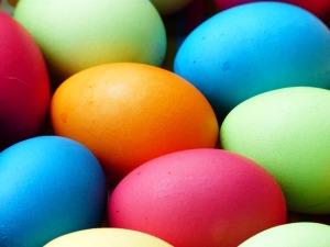 egg-100165_640